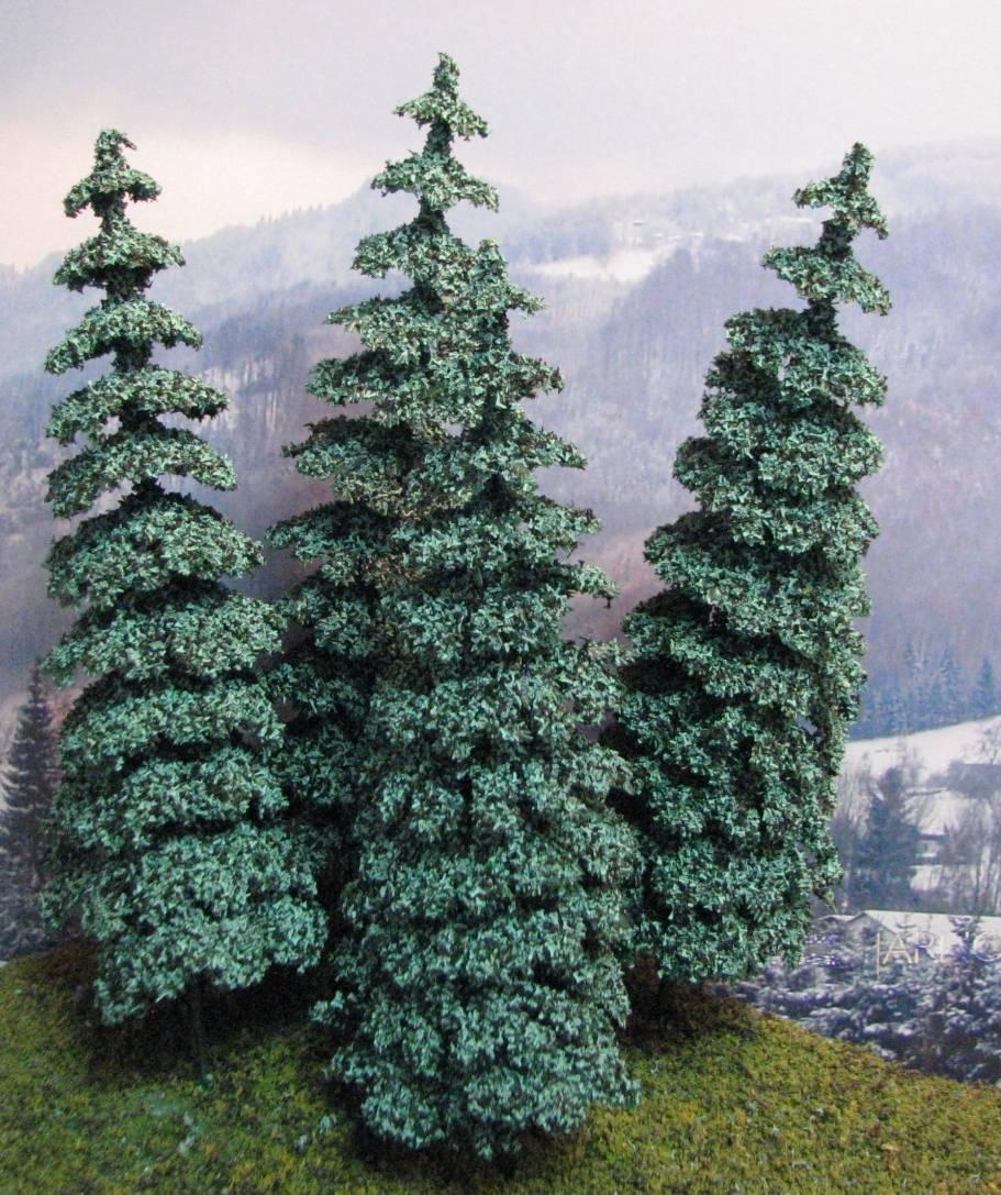 Blue Spruce Fir Trees 5 3 4 Quot Tall