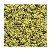 FOLIAGE BRIGHT GREEN 25G