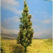 """TREE-CEDAR 3"""" 6pc TCD-3"""