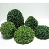 "SQUEEZE ME TREE ASSORTMENT 1.5-2.5"" COATED 5PC"