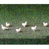 CHICKENS 1:24 WHITE 12PC