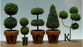 "TOPIARY-LARGE ROUND 'A' 5 1/2"" TALL 1PC"