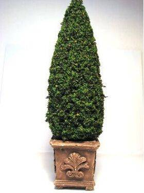 TOPIARY-6' SQUARE BASE TOP-12F