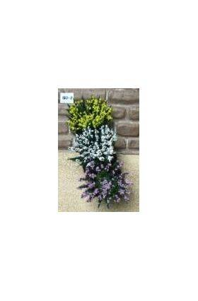 GARDEN DELIGHTS Yellow-Violet-White 6PC