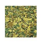 FOLIAGE LIGHT MIX 25G