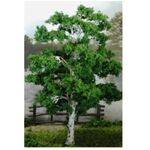 TREE-PREMADE 4'' BIRCH 4PC