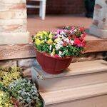 FLOWER POT TERRACOTTA w/FLOWERS H1P-01