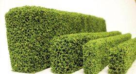 "HEDGE-COATED SPRING GREEN 1/4x3/16""X12''Long 1PC"