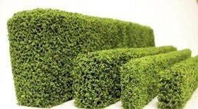 HEDGE-COATED SPRING GREEN 1X3/8X12''Long 1PC