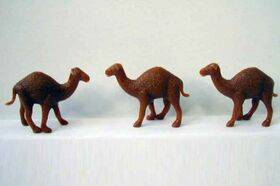 CAMELS 1:48 3PC