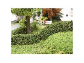 hedge-bendable
