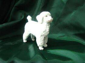 DOG-POODLE 1:12 1PC