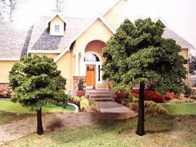 "TREE-PREMADE 3""tall ASH tree"