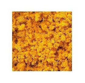 FOLIAGE AUTUMN GOLD 30G FINE #3