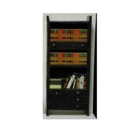 BOOKCASE W/BOOKS 1:48 1PC