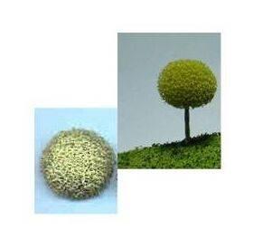 TREE-ROUND 'A' 1'' 10PC