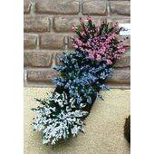 GARDEN DELIGHTS Pink-Blue-White 6PC