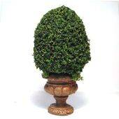 TOPIARY-4.5' ROUND BASE TOP-12G