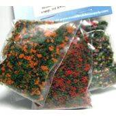 BLOSSOM GROWIES -Wild Flowers, Orange & Red BLGR-MX4
