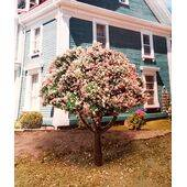 TREE-PREMADE 3''SPRING GRN.6PC